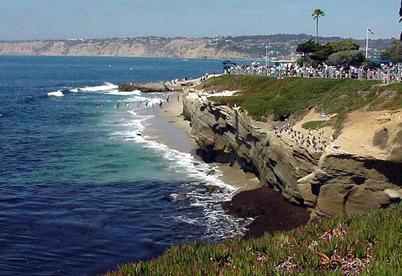 Picture of La Jolla Cove La Jolla California