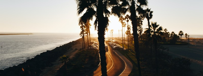Mission Beach Guide